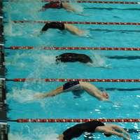 start_zwemmen.jpg