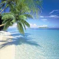 tropisch_eiland.jpg
